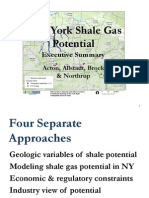 "New York Shale Gas Potential - Executive Summary   - James ""Chip"" Northrup"