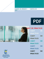 Caiet de practica_STIINTE ECONOMICE.doc