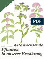 Wildwachsende Pflanzen in unserer Ernährung.pdf