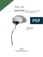 Atlas Final Neuro 2011
