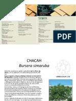 Catalogo de Arboles