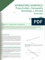Homología, afinidad e inversión