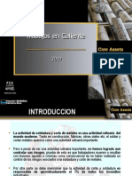 VIGIA Trabajos en Caliente Revision - 0 (2010)