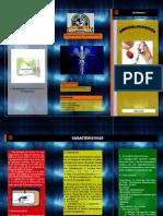 Aminoglucosidos Microbiologia I - Grupo A1
