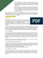 Droit+Pénal+des+Affaires+Scan+-+Résumé