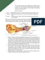 fisiologi pendengaran.docx