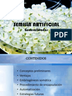 Semilla Artificial