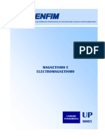 Magnetismo e Electromagnetismo