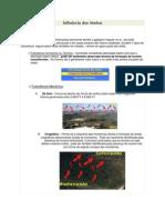 Resumo de CT Air Andinas