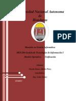 Informe Modelo de Operacion-Unificacion SI
