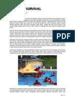 Basic Sea Survival.pdf