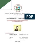 ENSAYO INTRODUCIÓN ALA COMUNICACIÓN.docx
