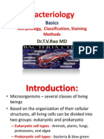 Bacteriology Basics  Morphology, Classification, Staining Methods