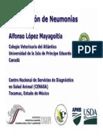 02-classificacion-neumonias