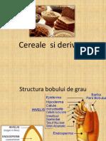 Cereale si derivate cerealiere