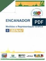 Encanador Industrial (Senai Prominp).pdf