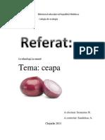 ceapa.docx