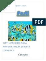 Proiect pesti.docx