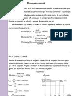 P_1_2_EFICIENTA_decizia.pdf