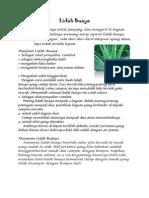 SBK.pdf