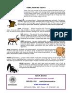 Animal Medicine Wheel