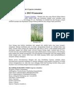 Klasifikasi Rumput Teki