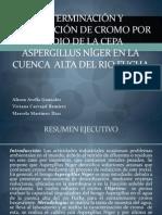 Expo Remediacion Proyecto (1)