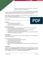 Mindtree.pdf