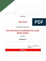 OracleUnifiedBusinessProcessManagementSuite11g_Sales.pdf