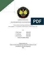 LAPORAN PROYEK GENETIKA GOLDAR1.doc