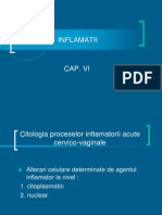 CITOLOGIE CAP 06.ppt