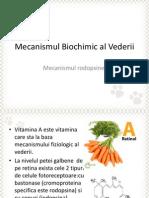 Mecanismul biochimic al vederii.pptx