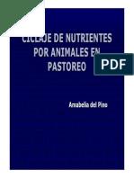 13 - Ciclaje de Nutirentes en Pastoreo