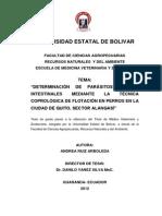 Tesis Parasitos GI en Perros.pdf