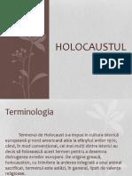 Holocaust (prezentare)
