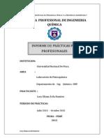 informe lucecitaaaaaaa_1 (2)