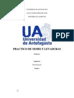 Informe Moho y Levadura
