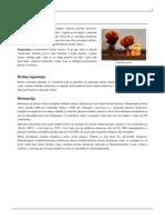 Eksplozija.pdf
