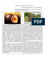 Analisis Comparativo Cholupa-gulupa