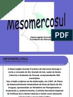 ApresentacaoInstitucionalMesomercosuleForum