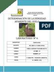 Determinacion de La Densidad Aparente Del Suelo (1)
