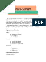 Clasificación y características de las acapcidades