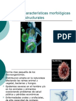Caracter i Sticas Virus 03