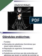 Aula 11 - Sistema Endocrino