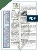 Hongos Fitopatogenos - 2 Tarea Exaula
