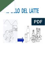 Il ciclo del latte