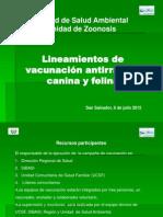 Presentation Lineamientos 060712