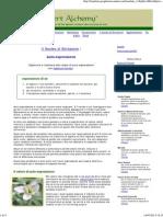 Auto-espressione.pdf