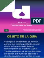 DUELO Presentacion Guia Para Profesionales
