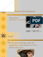 brain development of child